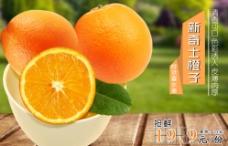 橙子特价海报图片