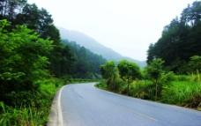 山下转弯公路图片