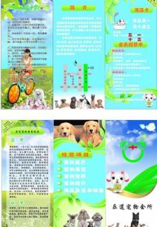 宠物三折页