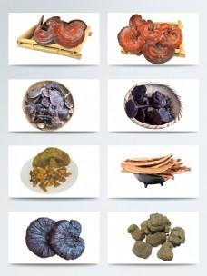 真实中华美食养生药材灵芝元素