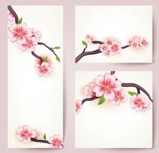 樱花花枝卡片矢量