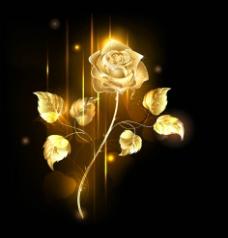 金色一支玫瑰花图片
