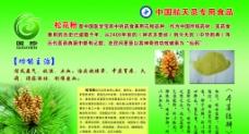 国珍松花粉功用图片