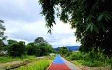 彩色道路图片