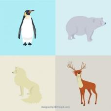 北极动物的种类