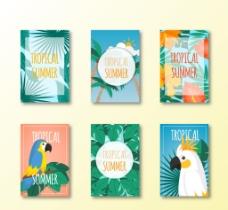 夏季热带风格卡片