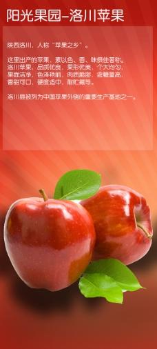 洛川苹果特点