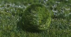 有弹性的草球Logo演绎动画AE模板
