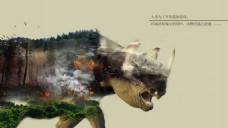 犀牛  生态破坏  森林 火灾