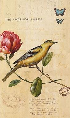 花鸟油画背景