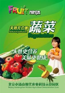 绿色蔬菜海报素材