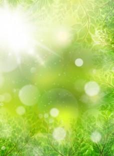 梦幻春季光晕与花瓣矢量素材