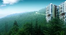 森林里的住宅图片