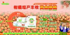 产品广告  宣传海报
