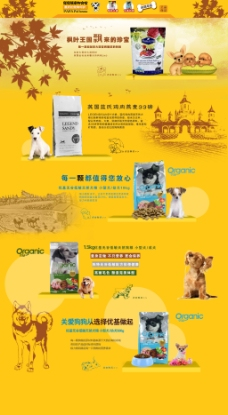 枫叶淘宝宠物用品海报全屏可爱狗粮黄色