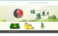 健康 养生网页设计
