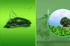 茶乡封面设计图片