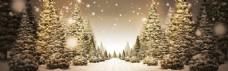 圣诞雪景背景素材 (43)