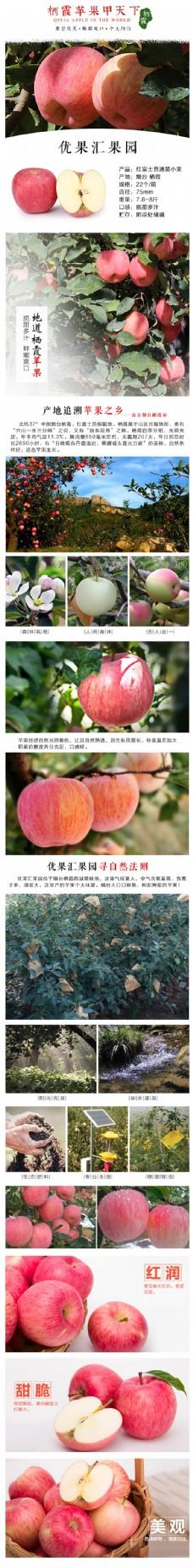 苹果详情页 水果详情页   红富士详情页
