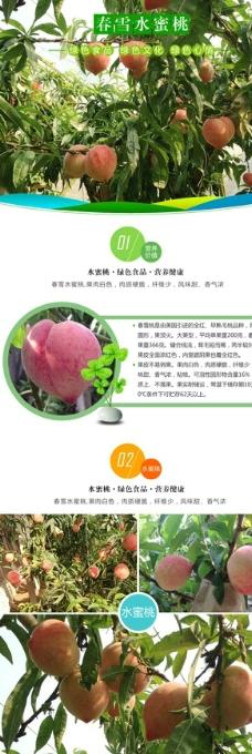 淘宝水果水蜜桃详情设计图片