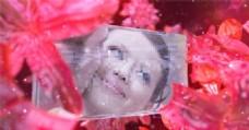 水晶花童话婚礼AE模板