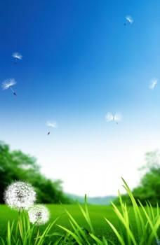 蓝天草地背景图片图片