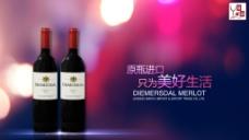 南非进口红酒