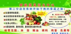蔬菜  绿色背景图片