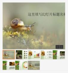 可爱勤劳的蜗牛自然主题PPT模板
