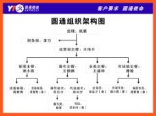 圆通组织架构图