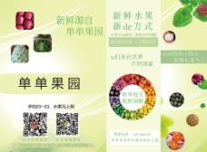 水果彩页宣传单图片