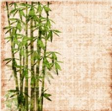 斑驳竹子图片