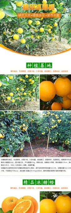 淘宝水果冰糖橙详情设计图片