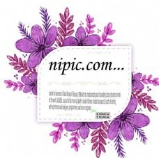 紫色水彩梅花矢量标签图片