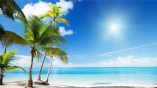 清新夏季海边沙滩椰子树