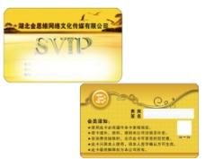 宜城市便民网 SVIP卡图片