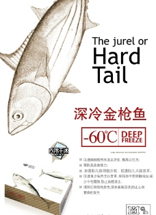 金槍魚展架海報設計圖片
