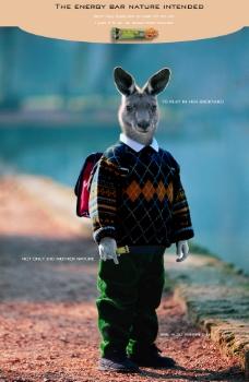 兔子人合成图片