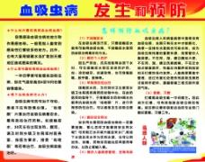 血吸虫病发生与预防