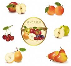 水果设计素材
