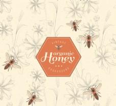 优雅的蜂蜜与蜜蜂的背景