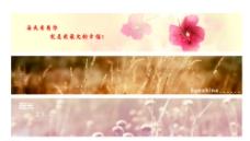 网站banner   广告横幅图片