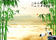 双鹤电视背景墙图片