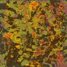 抽象花卉组合热带风情图片