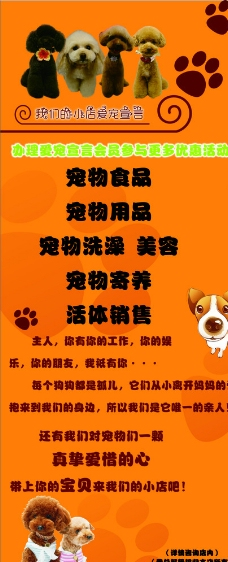 宠物店广告图片
