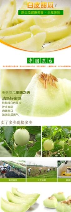 淘宝水果白皮甜瓜详情设计图片