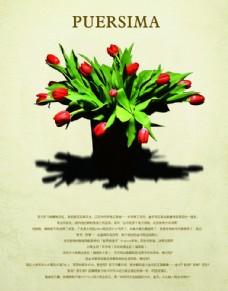 绿色小清新植物海报