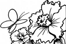 鲜花 花卉 矢量素材 eps格式_0016