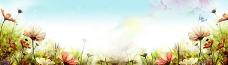 清新自然绿色素材 小草素材