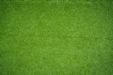 草地高清图片